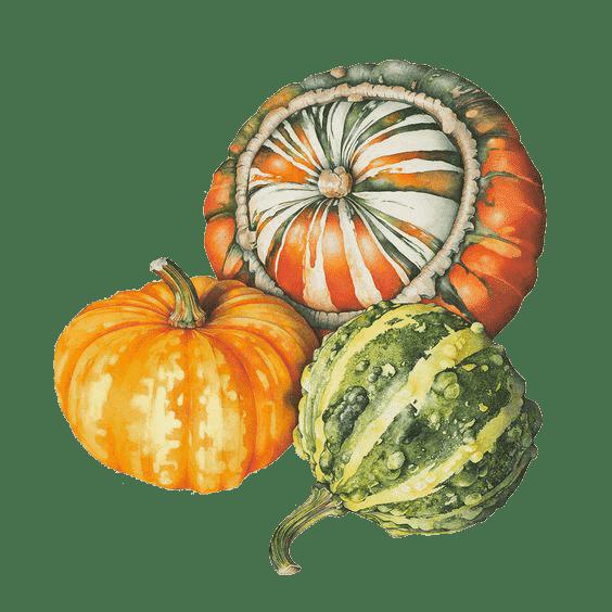 pmm-image-pumpkin